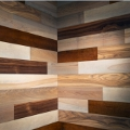 Mixed Species - Friendlywall - Urban Echo Prefinished Wall Panels