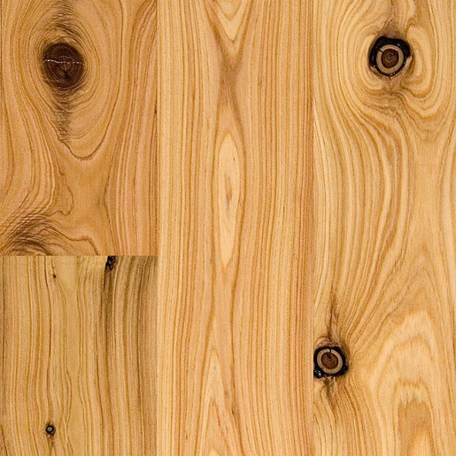 Australian cypress 3 4 x 3 1 4 x 11 84 select for Australian cypress flooring unfinished